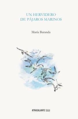 Un hervidero de pájaros marinos